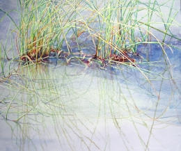 Grasses in Shallows transparent watercolor