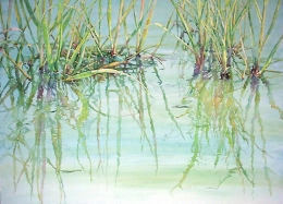 Estuary Shore Grasses transparent watercolor